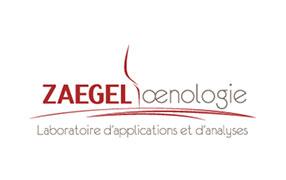 Saint Vincent Tournante Gevrey Chambertin 2020 - Zaegel