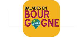 Saint Vincent Tournante Gevrey Chambertin 2020 - BALADES EN BOURGOGNE