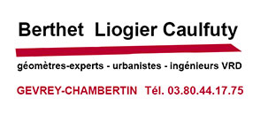 Saint Vincent Tournante Gevrey Chambertin 2020 - CABINET BERTHET LIOGIER CAULFUTY